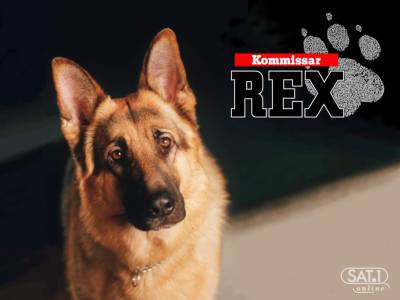 Résultat d'images pour série télévisée rex chien flic