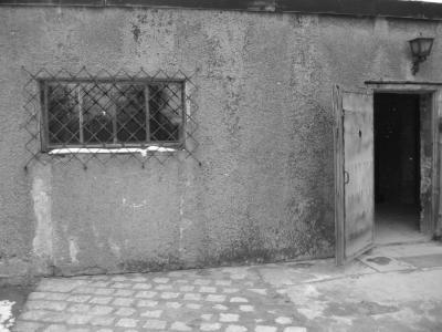 auschwitz chambre gaz et four cr matoire voyage culturel auschwitz et birkenau. Black Bedroom Furniture Sets. Home Design Ideas