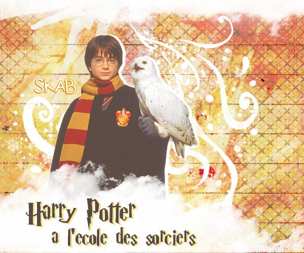 Film 1 : Harry Potter à l'école des sorciers