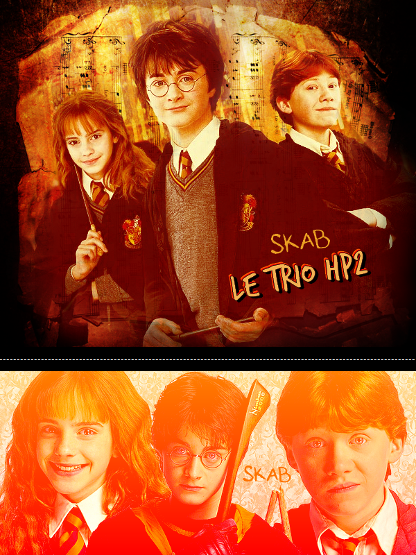 Film 2 : Harry Potter et la chambre des secrets