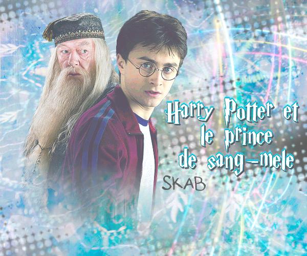 Film 6 : Harry Potter et le prince de sang-mêlé