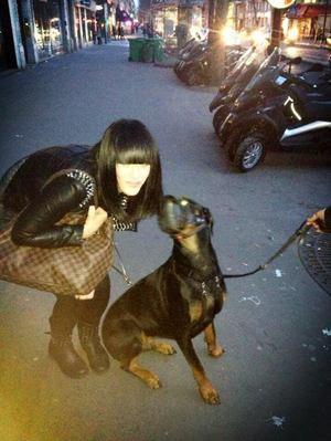 J'adore les chiens #Paris#12�me