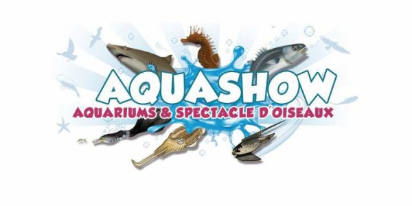 Aquashow : le paradi breton  - à  Audierne en Bretagne (29)