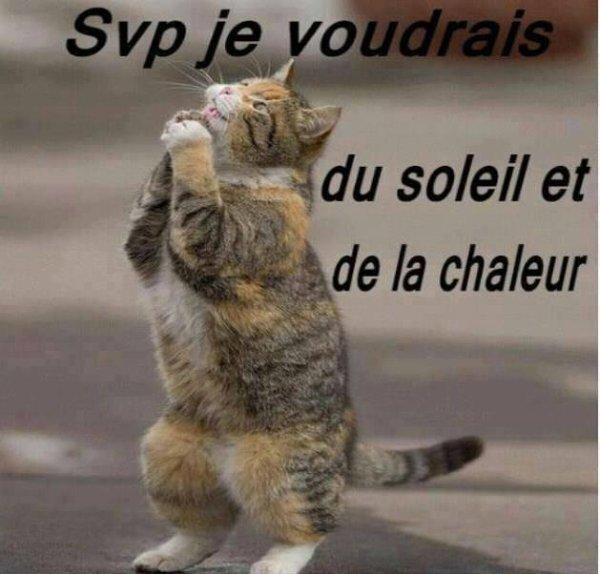 WEEK-END HUMOUR...UN PEU DE TOUT !!!