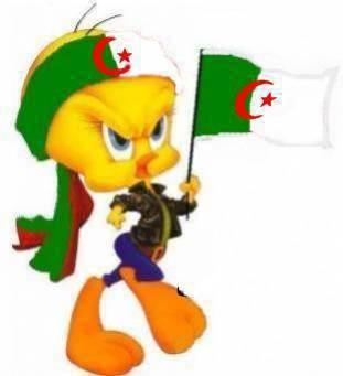 Foot Algerien 65