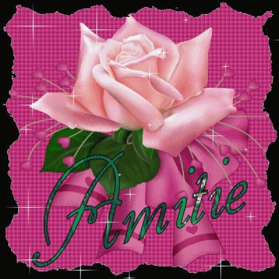 La fleur de l'Amiti�....pour vous mes ami(e)s