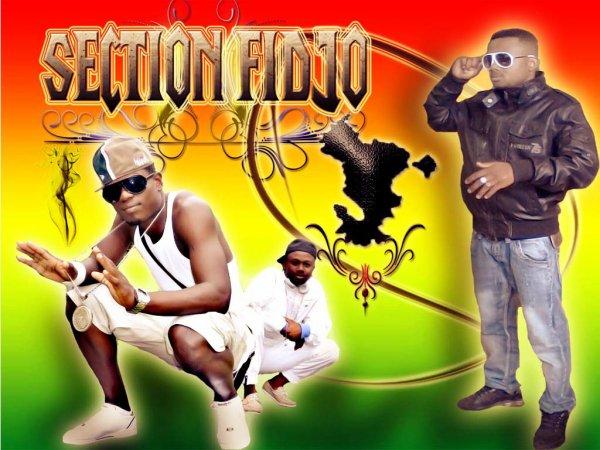 Section Fidjo