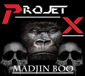 Projet X Vol.1 / Madjin Boo UFC (2011)