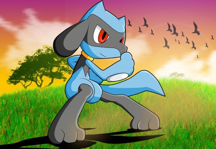 Une équipe Pokémon au top ! - POKéMON X Adventures - Le ...