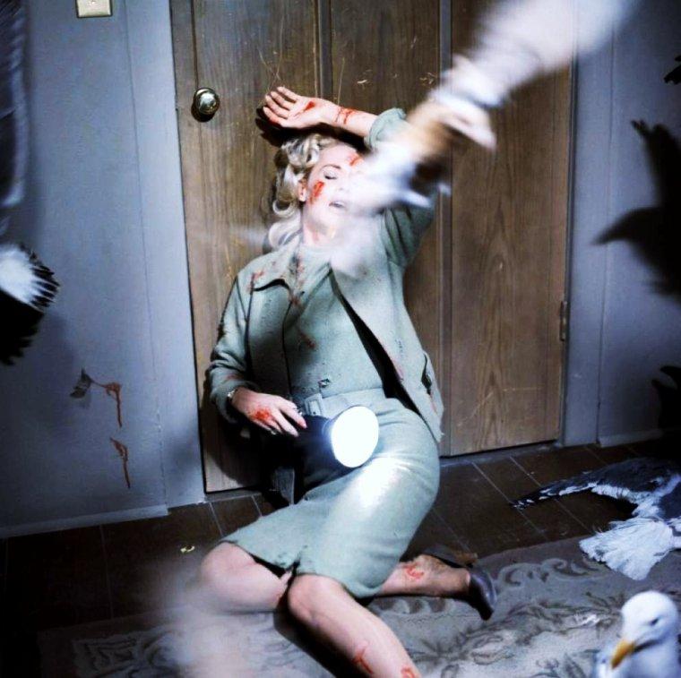 """1963 / CULTISSIME... Quand Tippi se fait attaquer par les oiseaux d'Hitchcock dans le film """"the birds"""" (Les oiseaux)."""