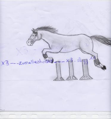 Cso cheval en libert qui saute en noir et blanc deuxx - Cheval qui saute dessin ...