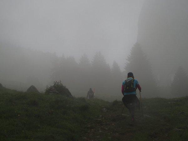Trail des Cr�tes du Chablais - 19 juin 2016