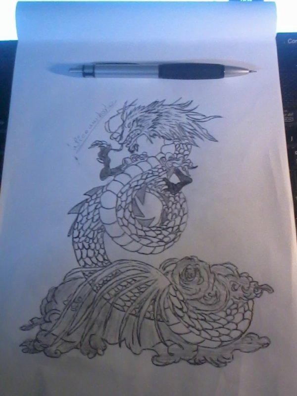 broullion de dragon chinois