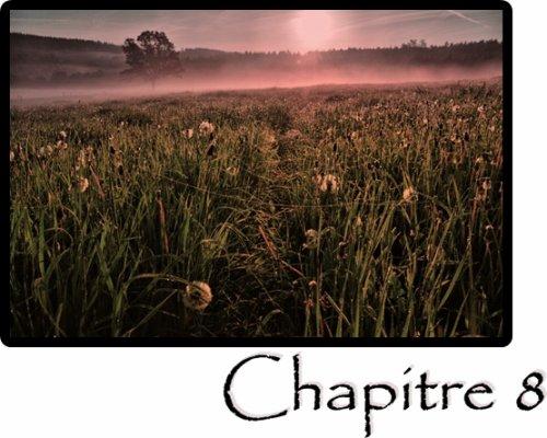 Chapitre 8 : Near and far