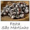 Festa do S�o Martinho
