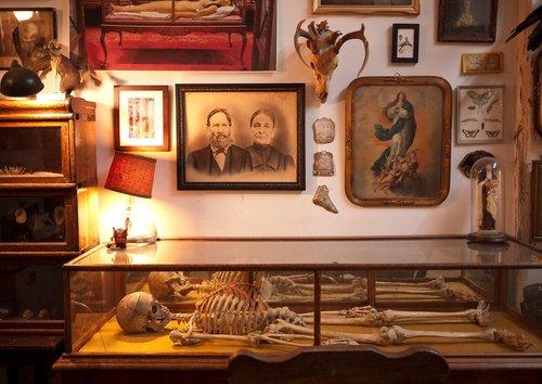 Wunderkammer Cabinet De Curiosit 233 S Cabinet Of