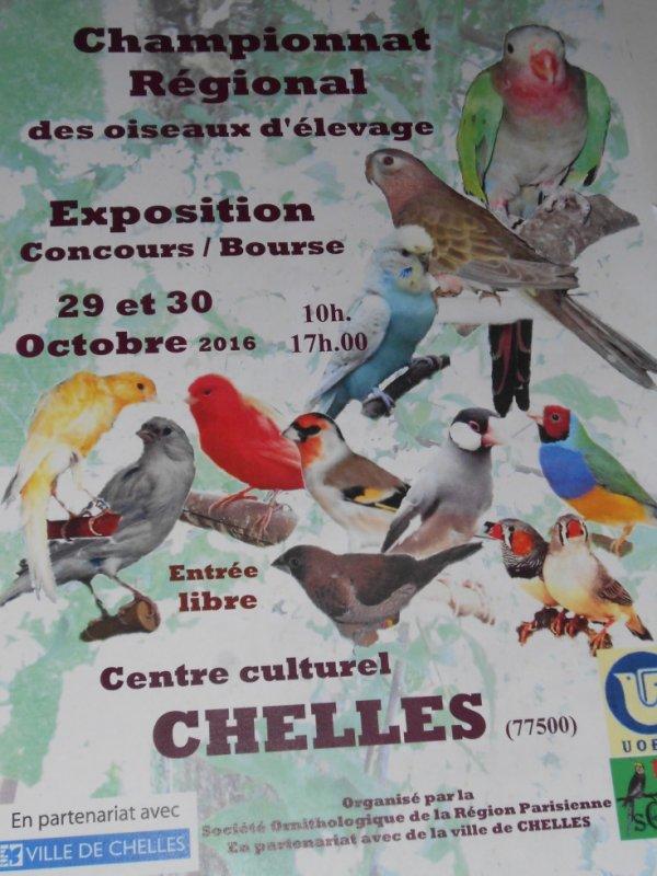Championnat  Regional Ile de France