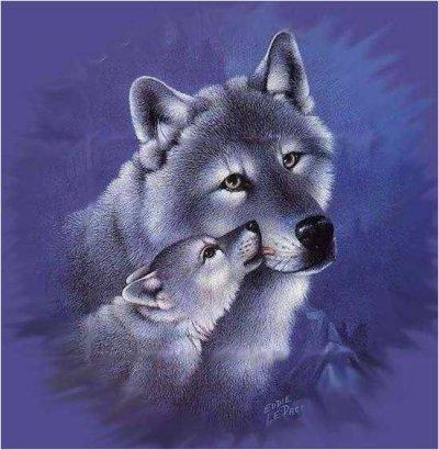 Poèmes Moulin du Verger La Mort du Loup