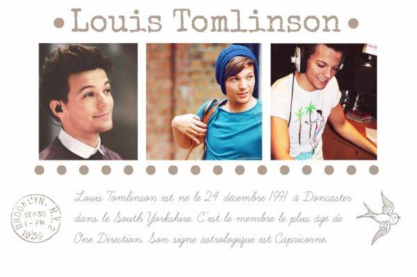 Biographie Louis Tomlinson