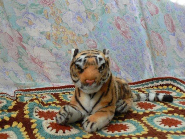 ma petite tigresse