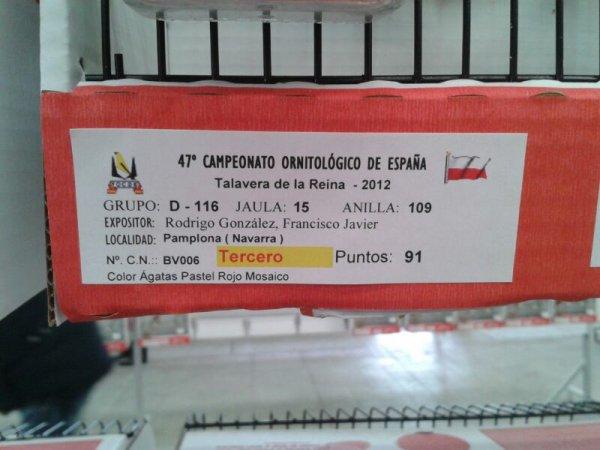 RESUMEN CAMPEONATO DE ESPA�A FOCDE 2012
