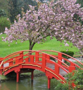Paysage japonais blog de neko chan suki for Paysage jardin japonais