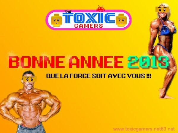 Bonne Ann�e 2013 !!!