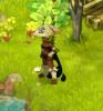 offset-raval