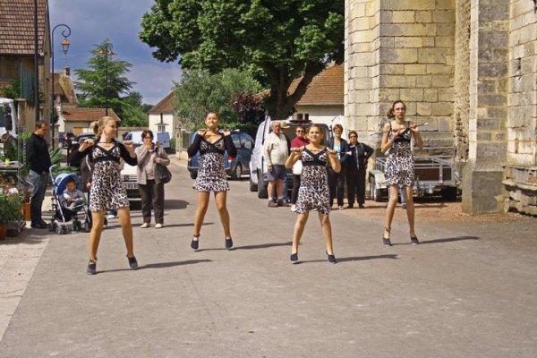 """""""moyennes"""" foire au fleurs 2011"""