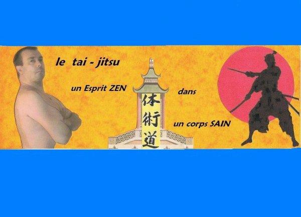 LOGO  TAI-JITSU  DO