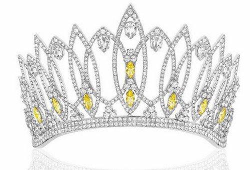Détails sur l'élection Miss France 2017
