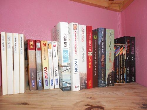Mes étagères à livres