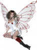 papillon62122