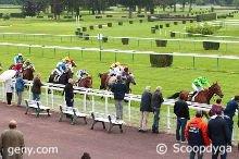 lundi 13 juin 2016 plat 16 chevaux arriv�e 12 8 6 15 1 - mardi nantes plat 1600 m�tres 14 chevaux