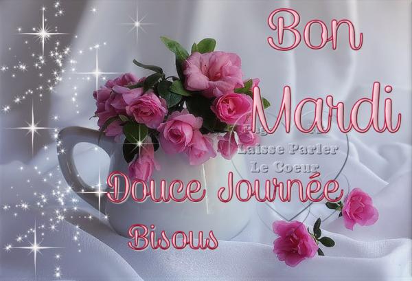 BON MARDI ♥