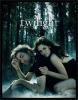 twilight--91190