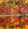 Bienvenue à l'automne au Canada, où la nature se transforme en une oeuvre d'art.