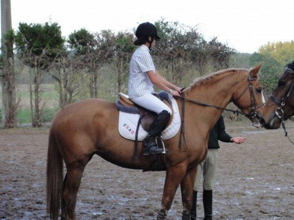 Un jour je saurais monter à cheval , un jour peu être ♥ ...