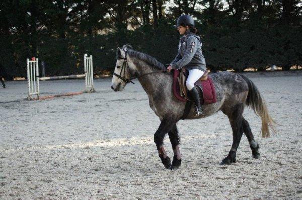 Corné 29/01/2012