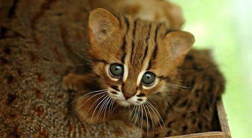 so cutee <3