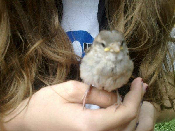 my bird <3