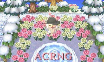 Bienvenue sur le blog ACRNG