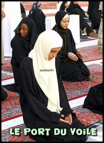je souhaiterai rencontré des soeurs fillah sur roubaix lille ou tourcoing, je suis moi meme une soeur fillah mais je souhaiterai frequenter des personne.