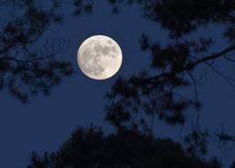 La lune me fait penser a tant de gens <3