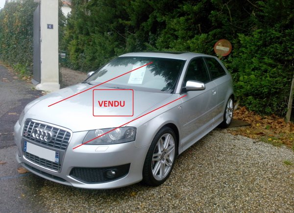 Audi S3 II 2l TFSI AN 12/2007 60000km D ORIGINE FULL OPTIONS (VENDU LE 08/12/2014)