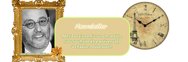 art. n° 5  Newsletter iii