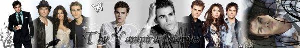 Bannière Stefan Elena & Damon