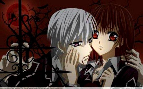 Vampire Knight : l'Anime
