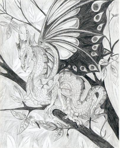 Le dragon aux ailes de papillon