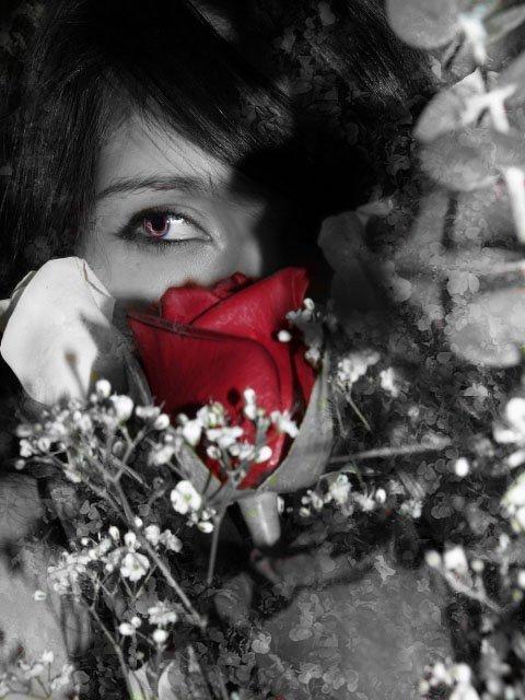 Respecter c'est Aimer, qui ne sait respecter, ne sait aimer